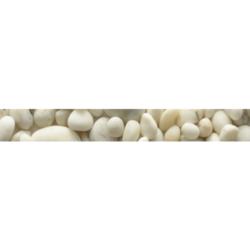 Фриз Фрезия ракушка 5.4х50 см